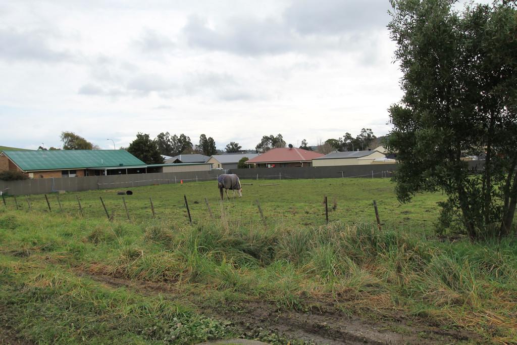 property image 1288294