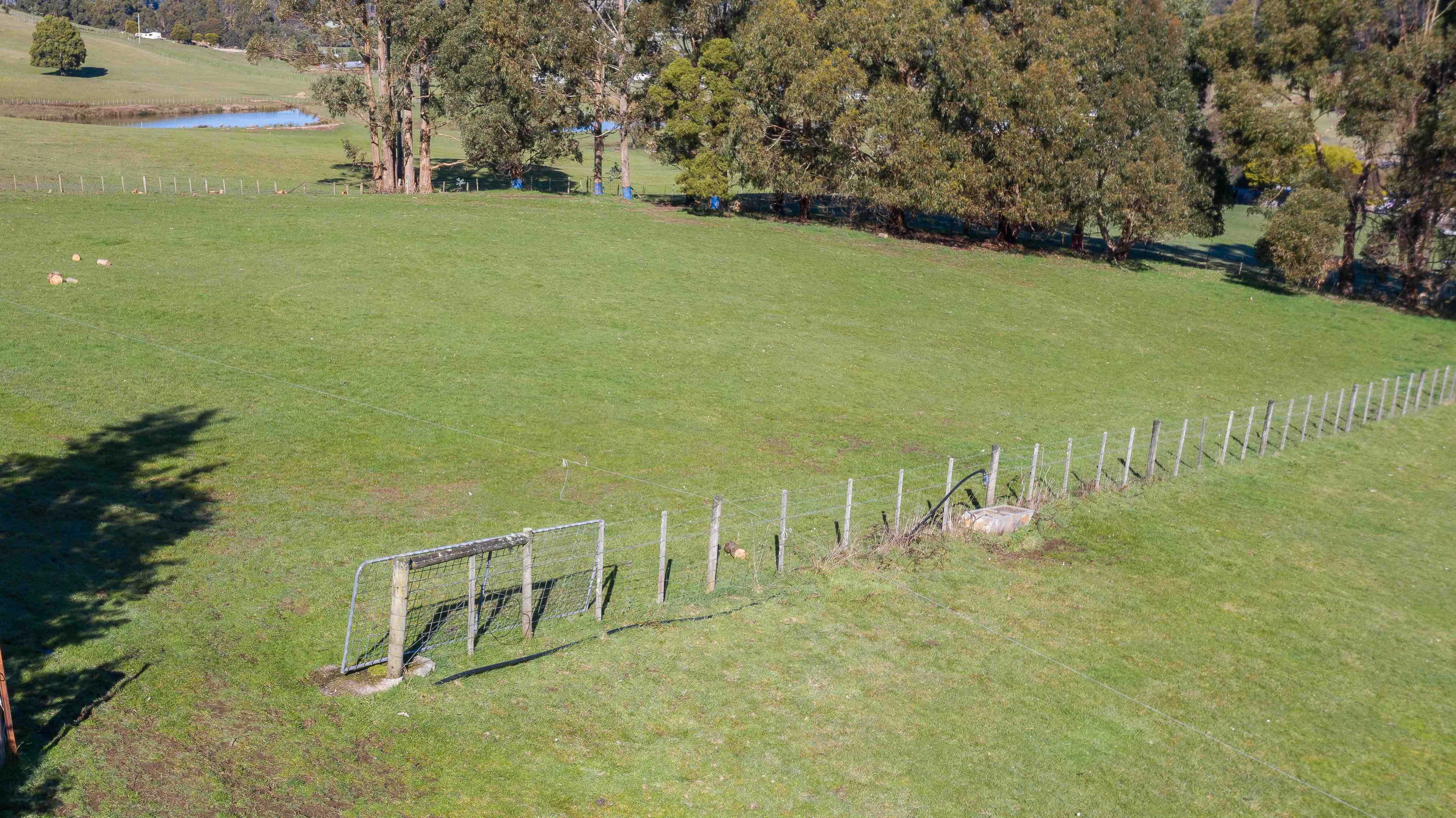 property image 1294780