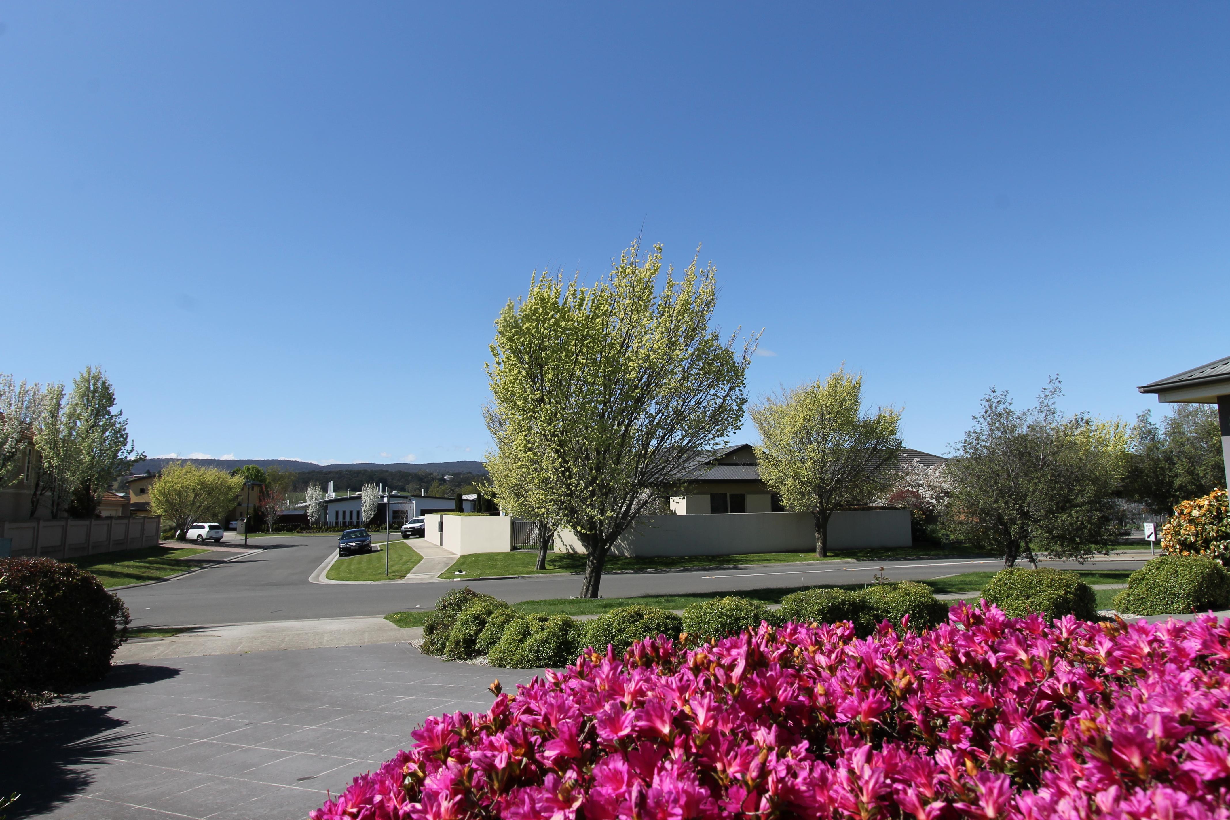 property image 1514429