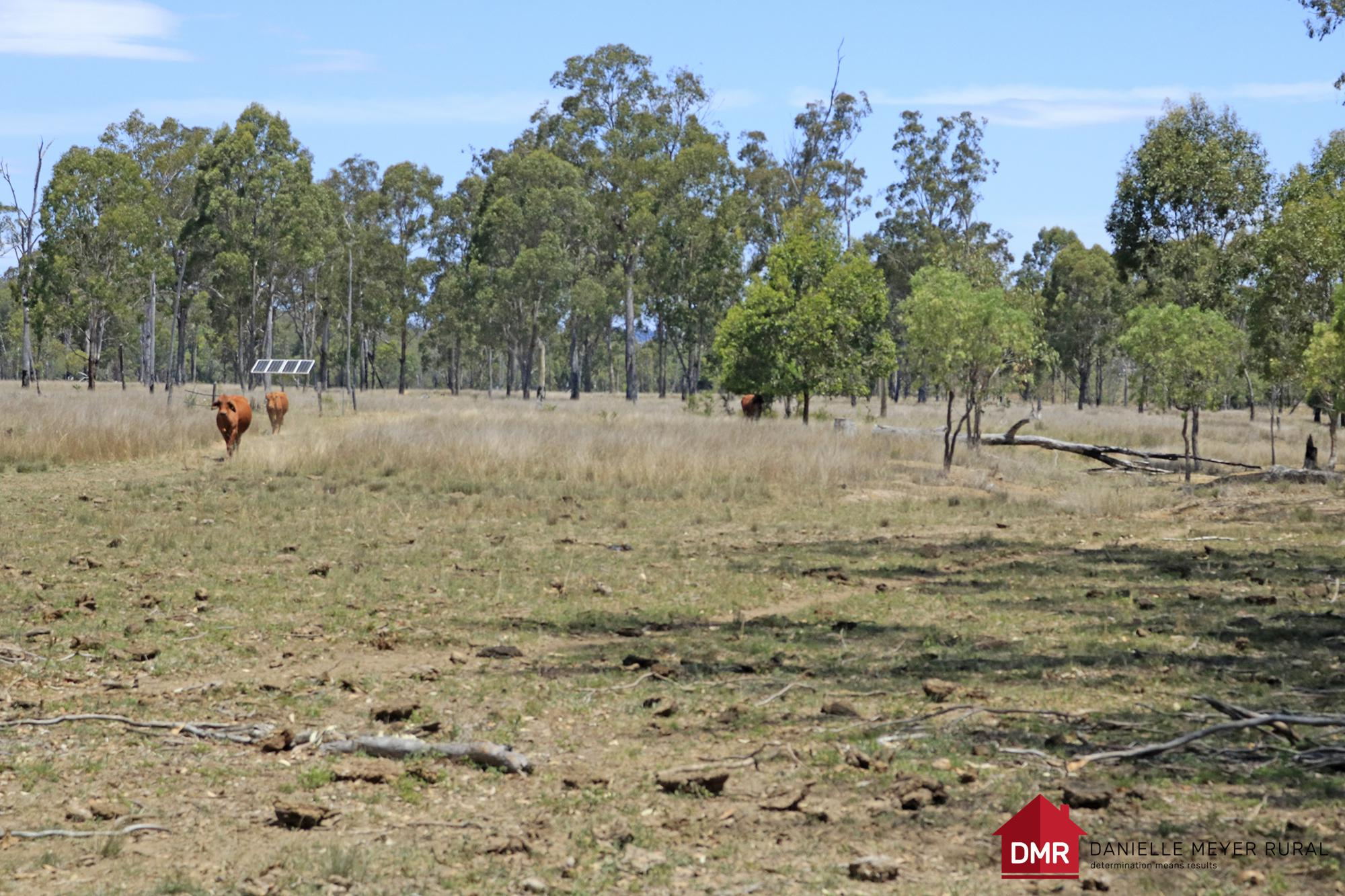 EXCELLENT FREEHOLD LOW MAINTENANCE PRODUCTIVE COUNTRY