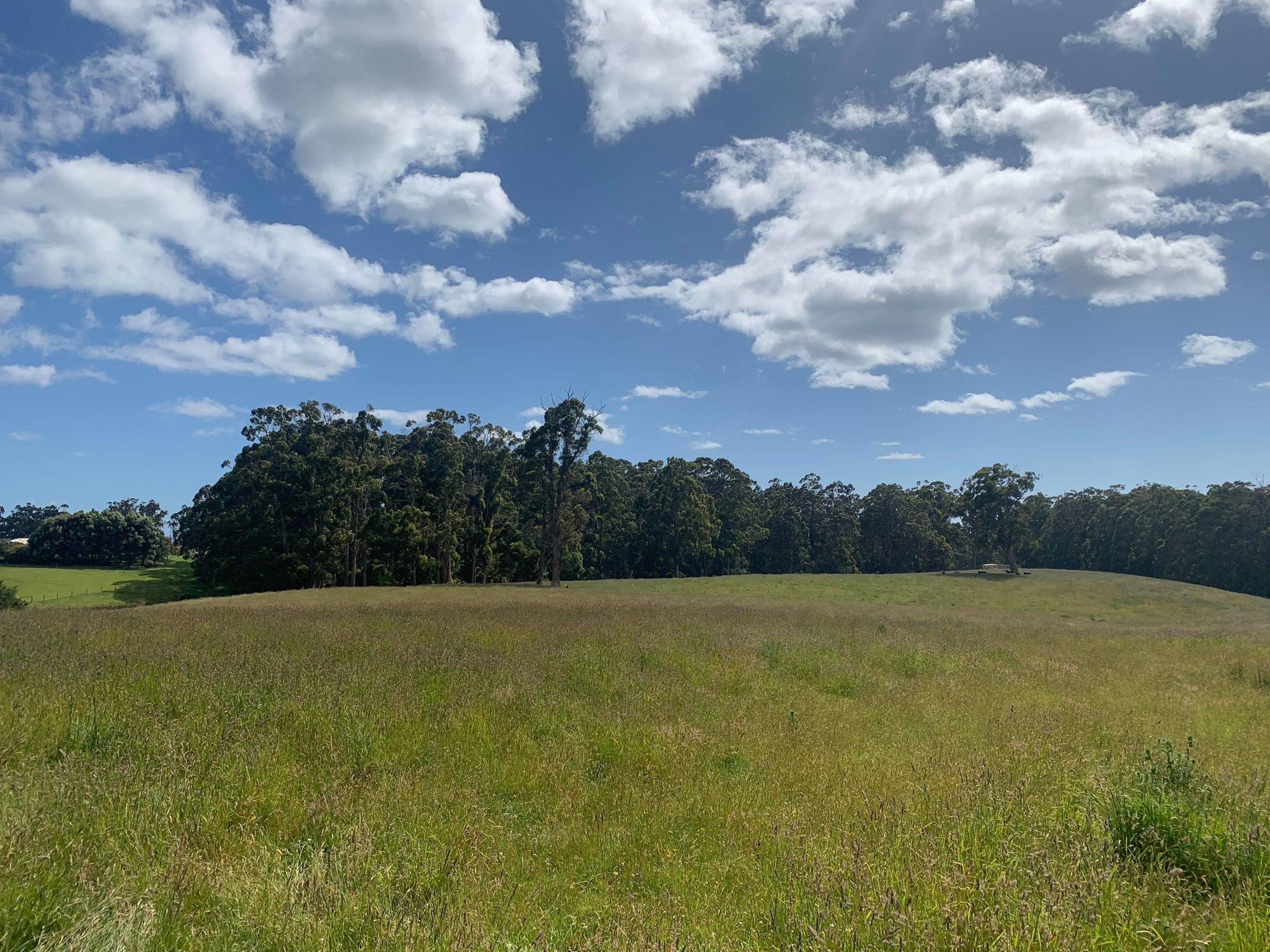 property image 2096285