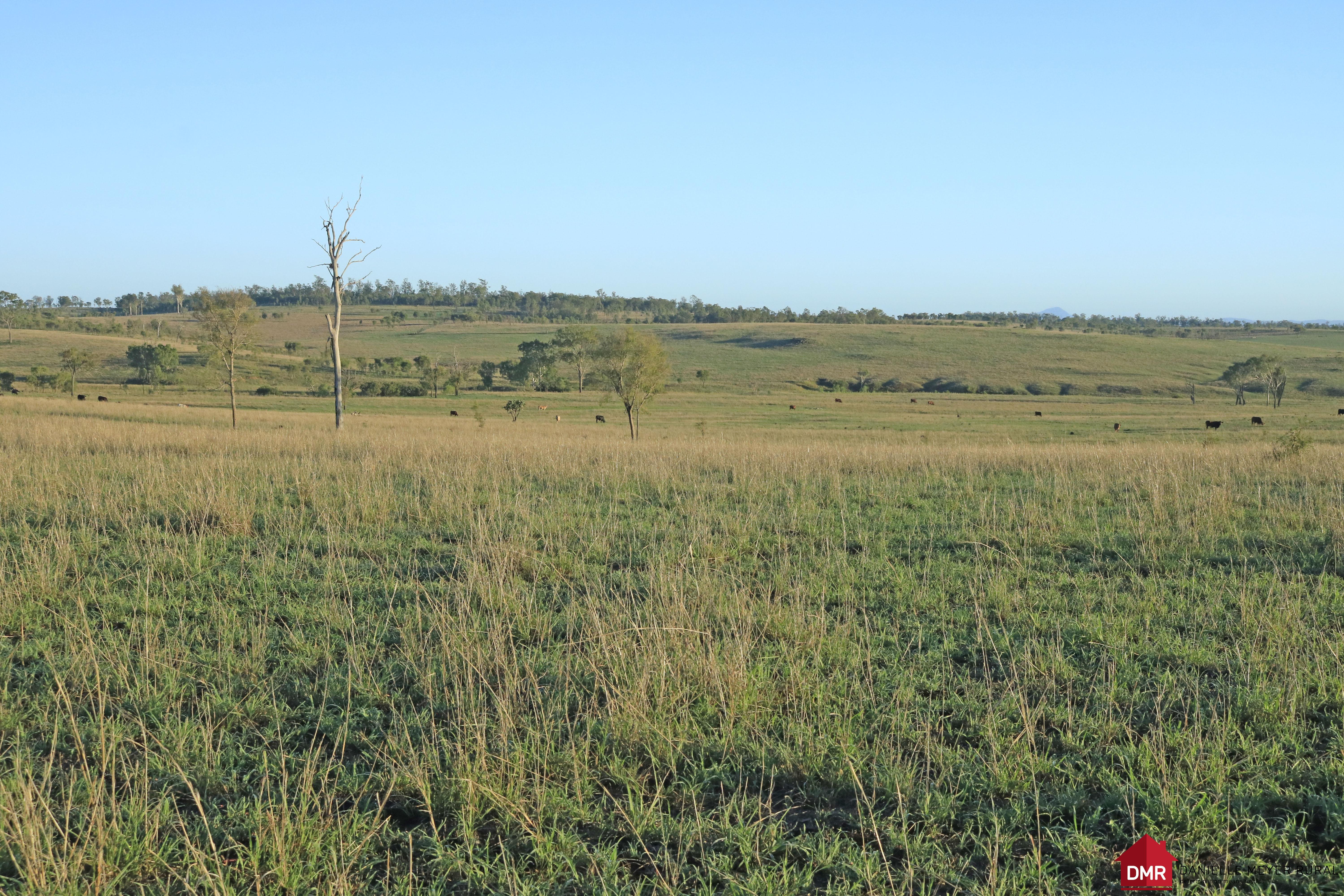 2,953 ACRES 15 MINUTES FROM GAYNDAH