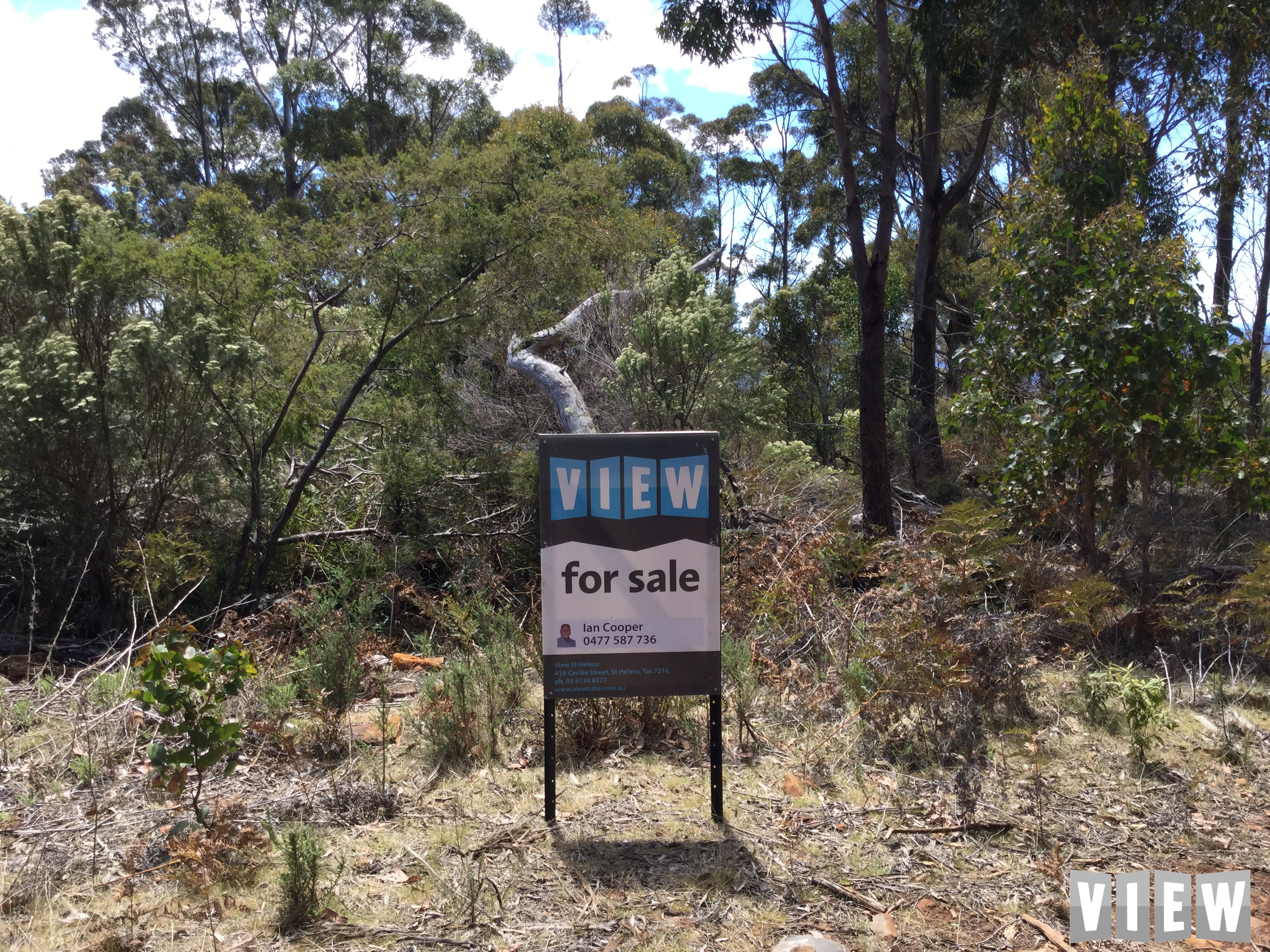 property image 2218792