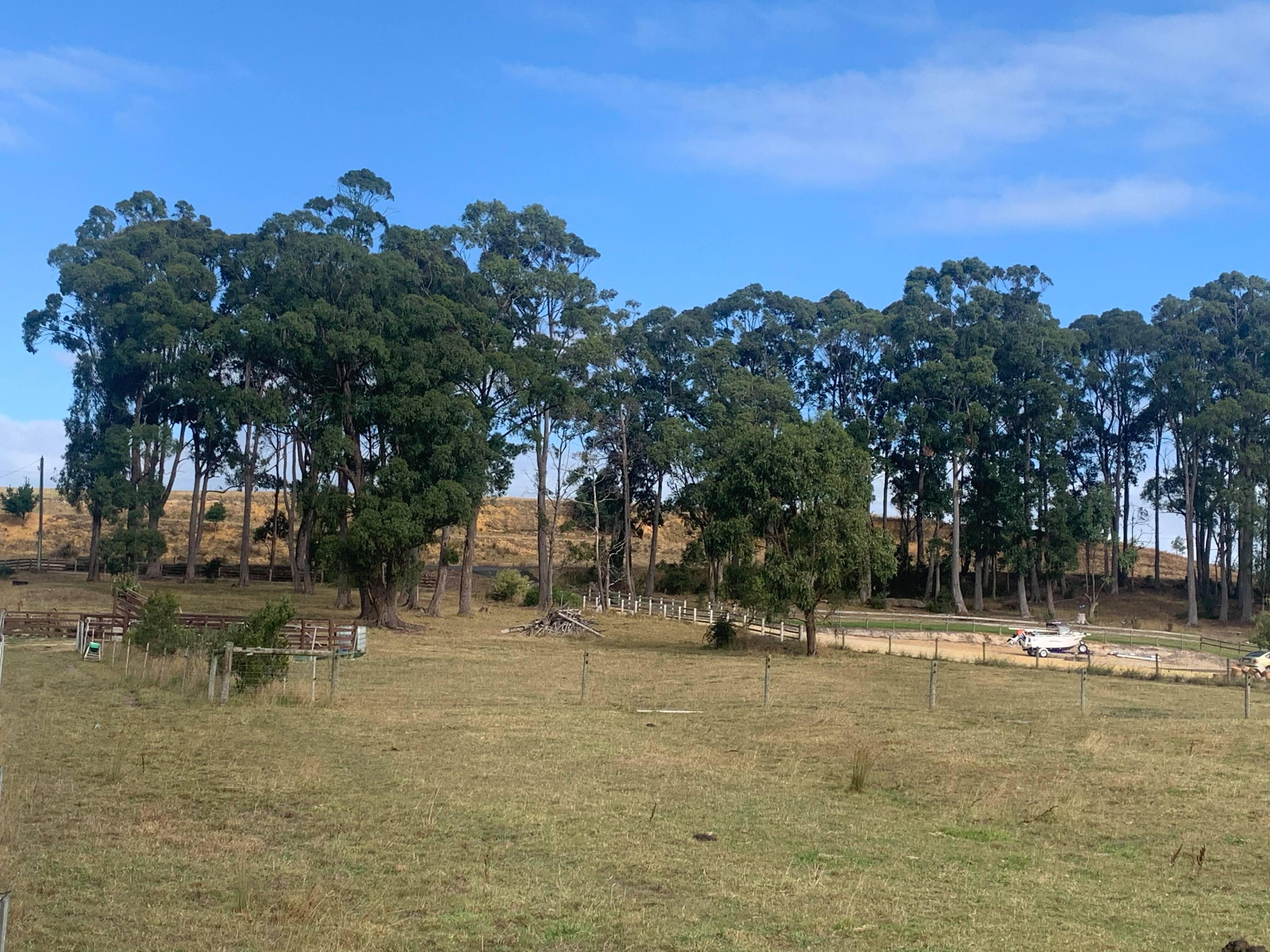 property image 2219078
