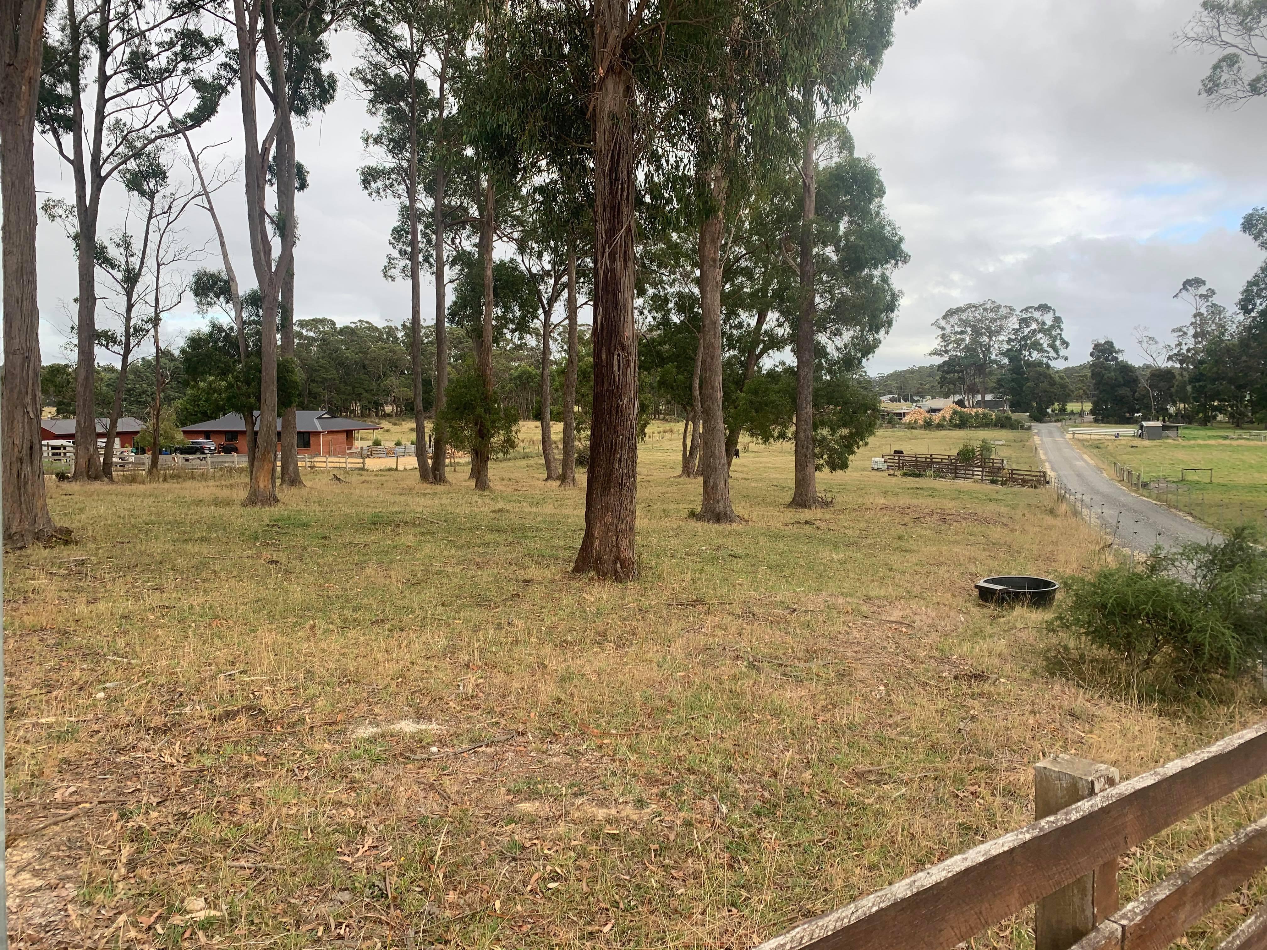 property image 2220681