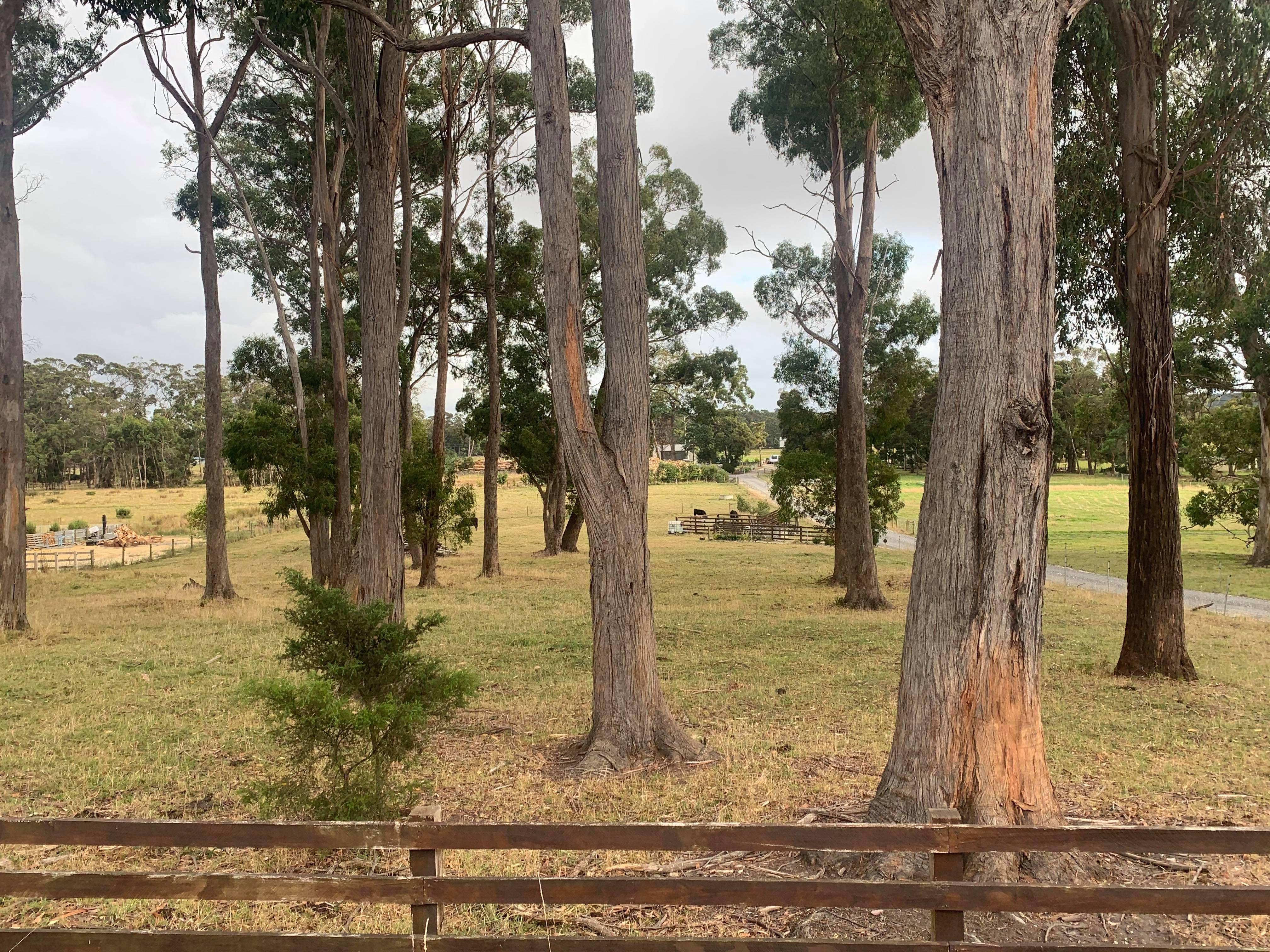 property image 2220676