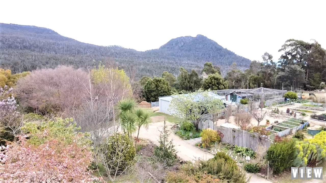 property image 2470343