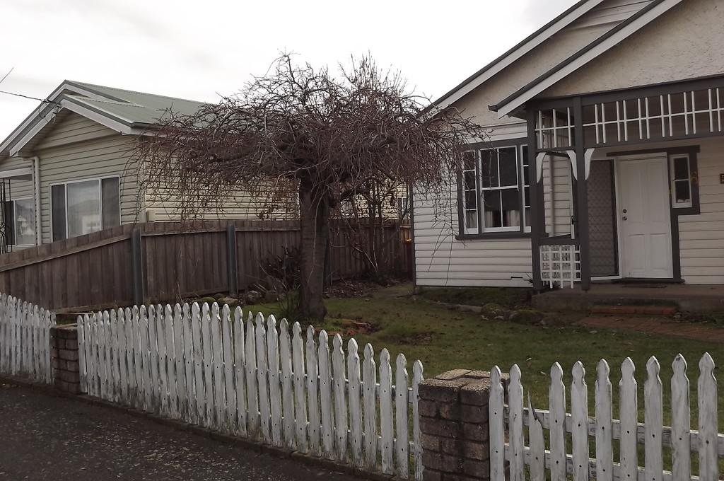 property image 175261