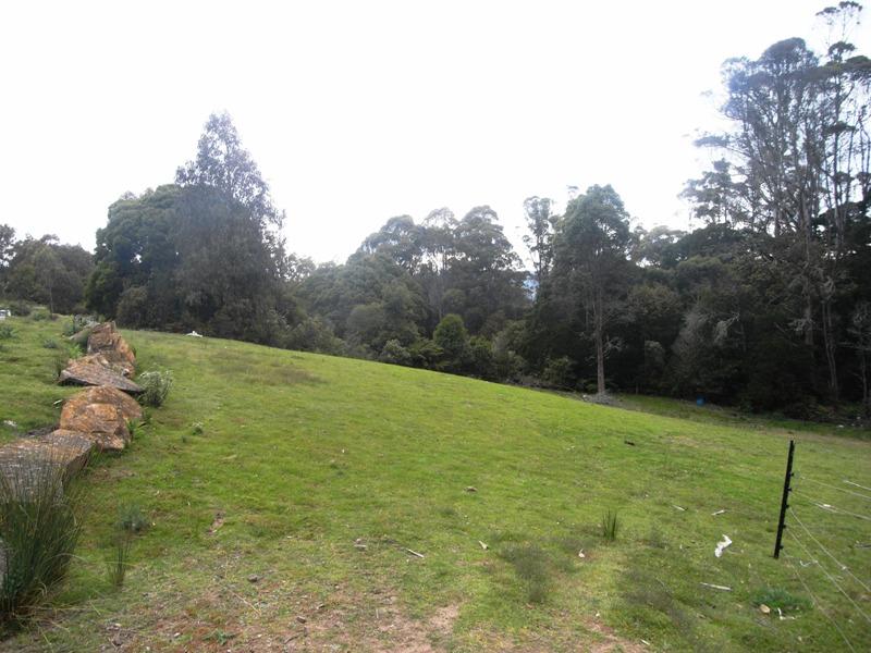 property image 176129