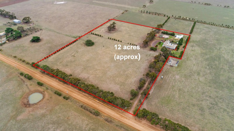 Country Estate with City Convenience – 12 acres (approx)