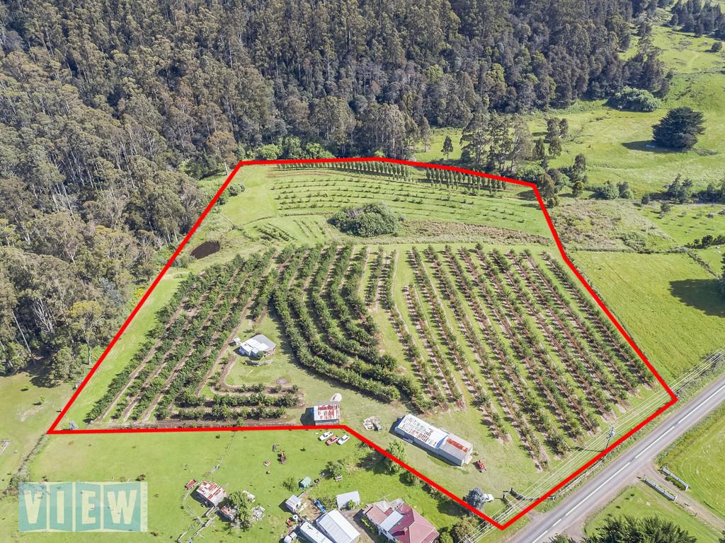 property image 658844