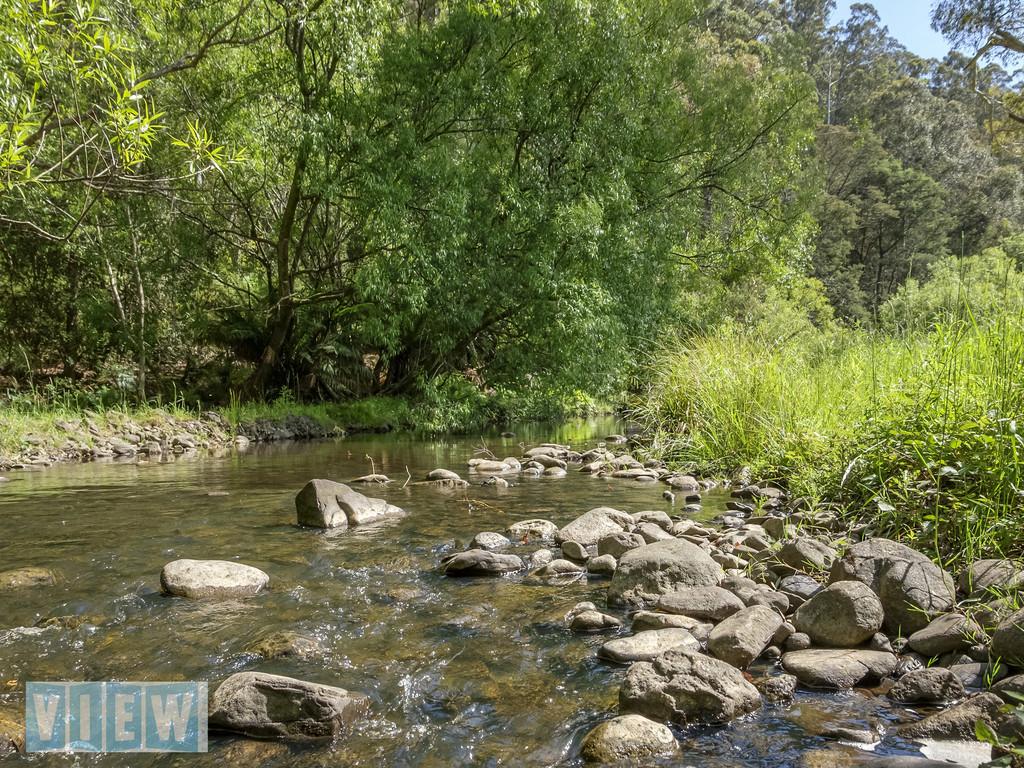 property image 658846