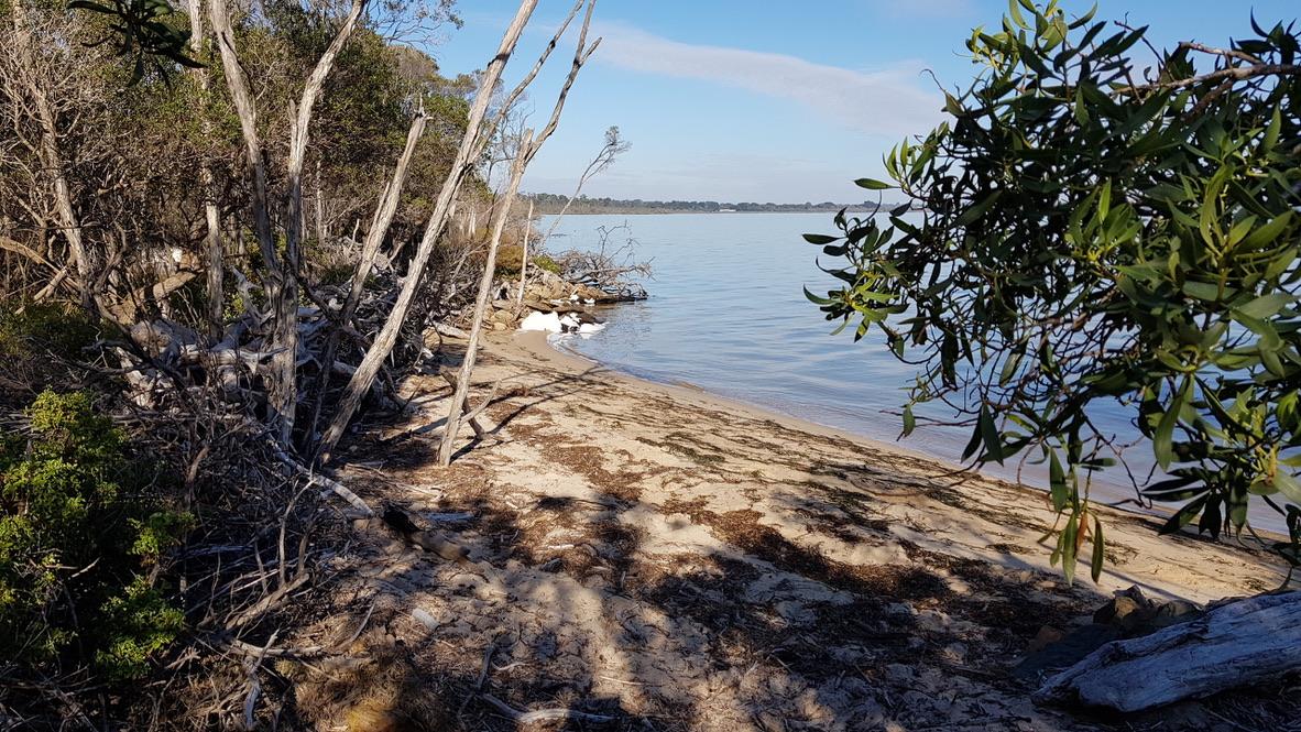 Beach Front.. Wildlife.. Nature.. 5 Acres of Paradise……