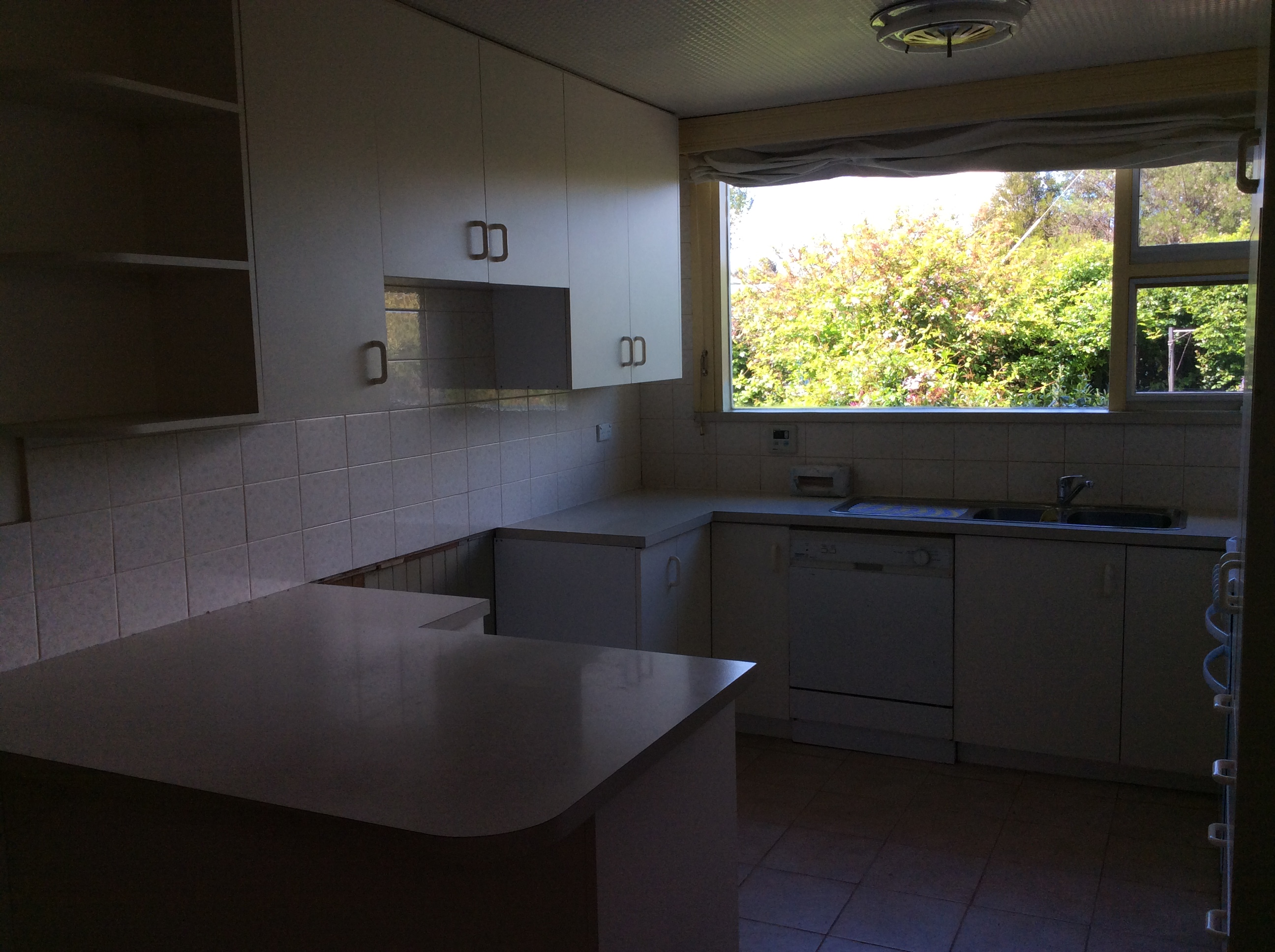 property image 1224318