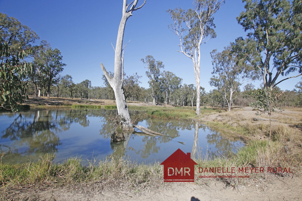 SOUGHT AFTER BREEDER COUNTRY NEAR MONTO