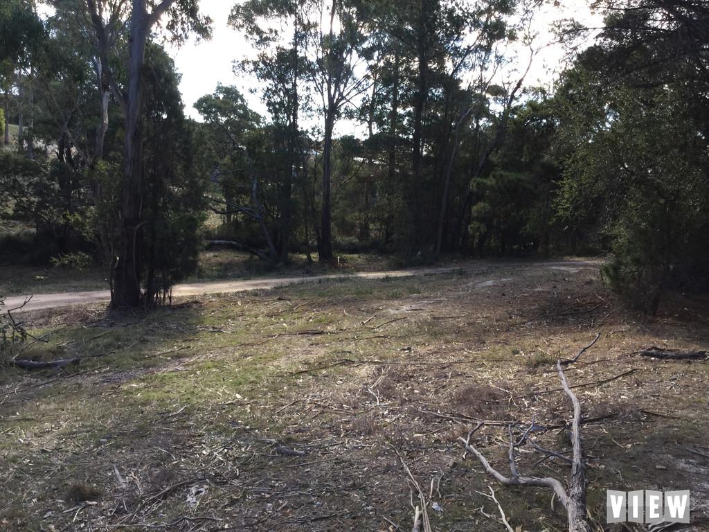 property image 1032470