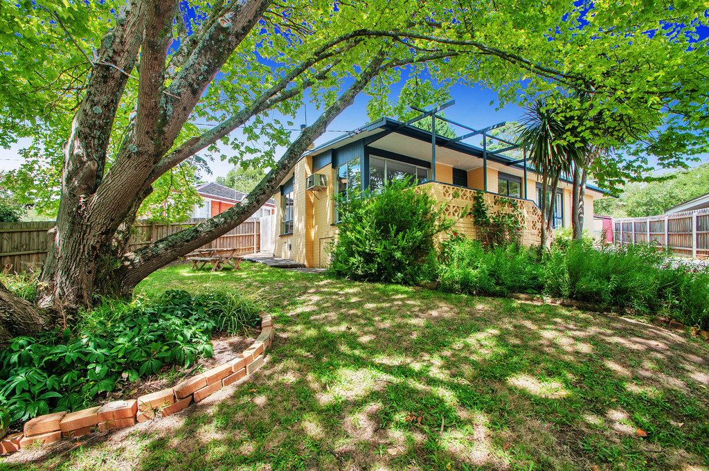 CHARM IN THE HEART OF LEAFY – MONTROSE