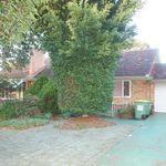 Pet friendly 3 bedroom house with seperate games room