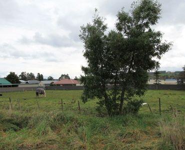 property image 1463259