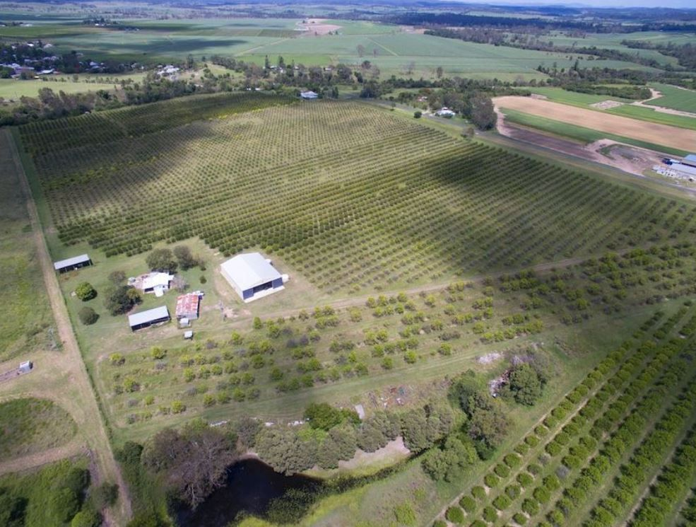 71.5 Acres of Farming Land + Classic Family Home!!