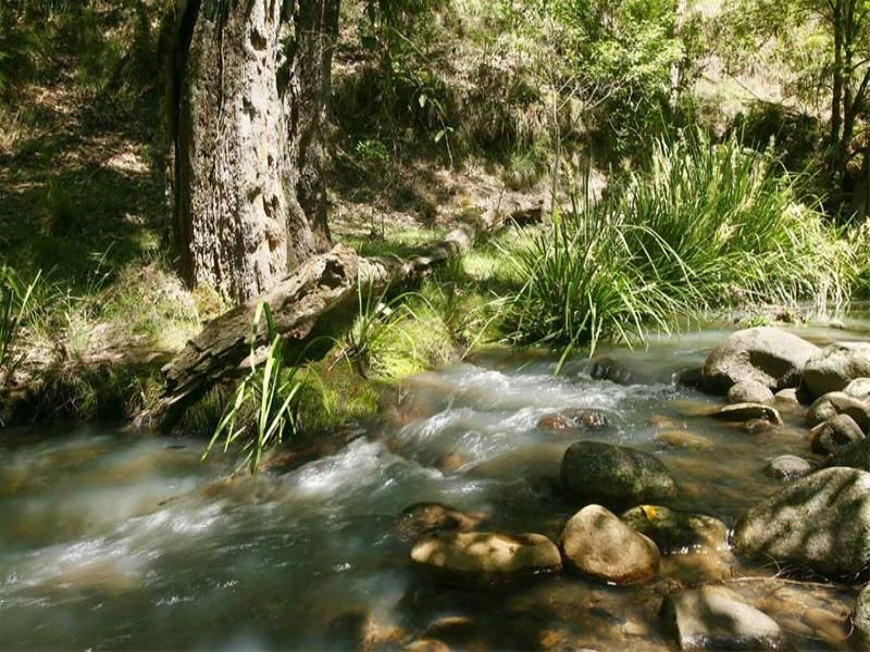 Located at the Foothills of the Barrington Tops