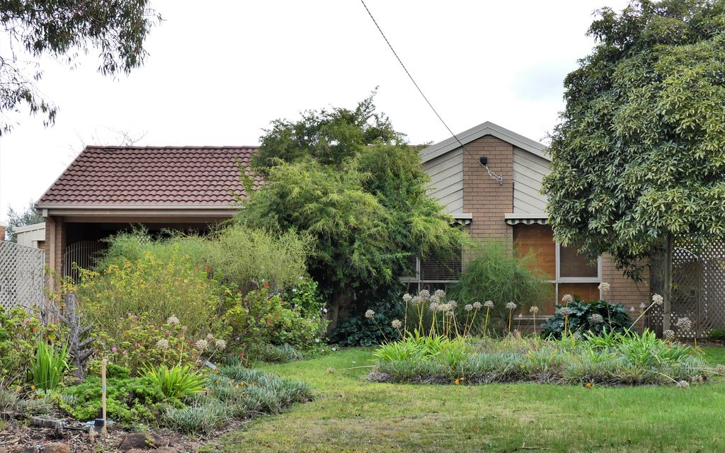 3 Bedroom Home with Massive Outdoor Entertaining Area!