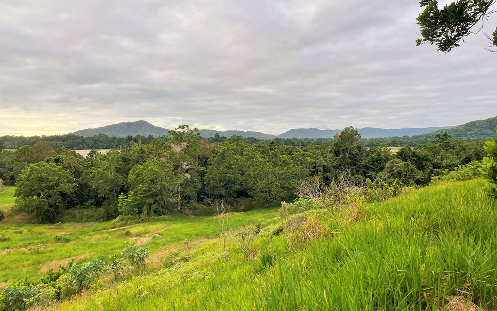 GORGEOUS VALLEY BORDERED BY RAINFOREST & CREEK