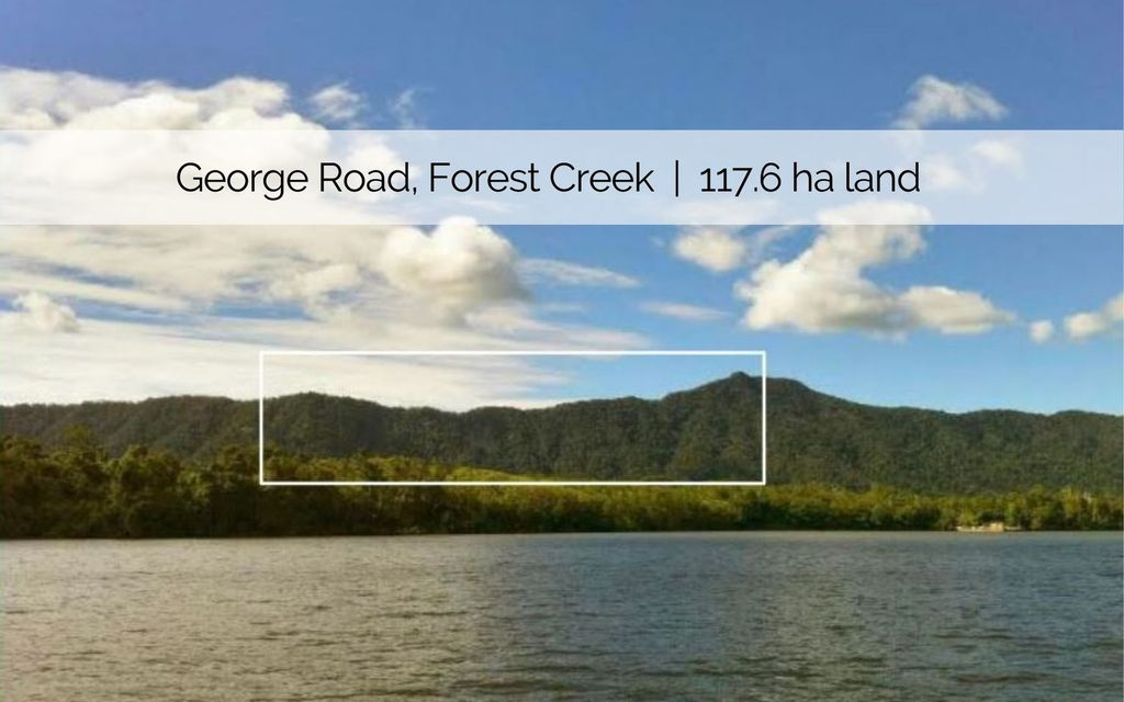 A WHOLE SIDE OF A MOUNTAIN! 117.6 HA (290 ACRES) OF PRISTINE DAINTREE RAINFOREST LAND IN RARE ECO AREA