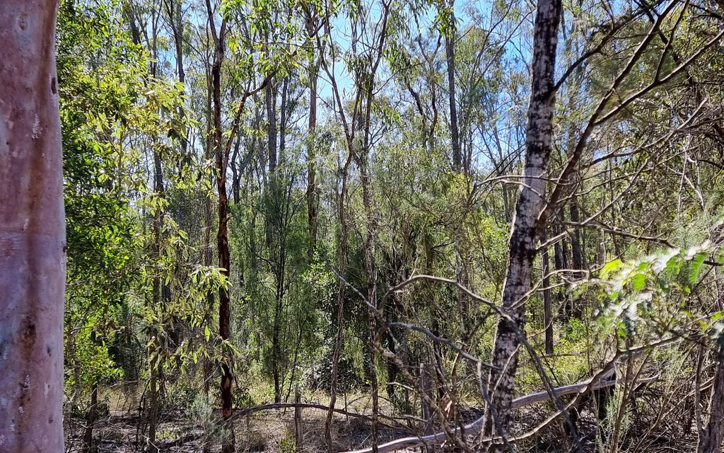 5 ACRES CLOSE TO TOWN