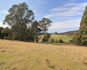property image 225658