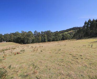 property image 225660