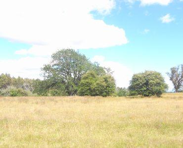 property image 232377