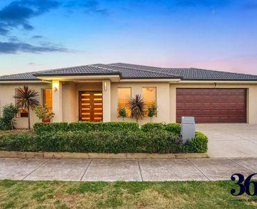 property image 233891
