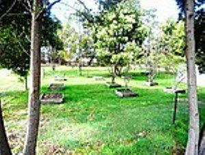 property image 246166