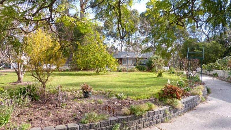 property image 253850