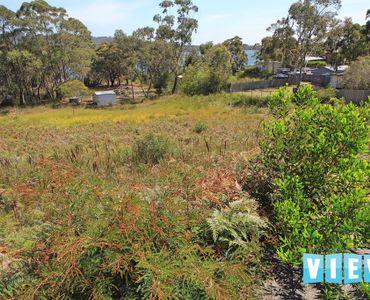 property image 267631