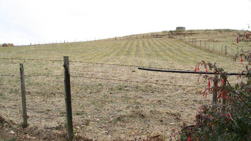 property image 289797