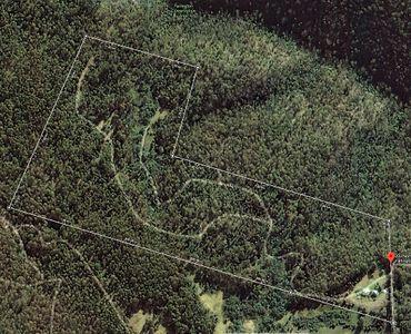 property image 297524