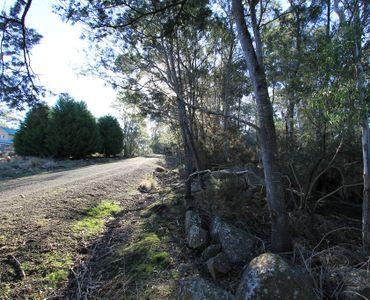 property image 392792