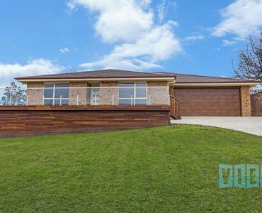 property image 446862