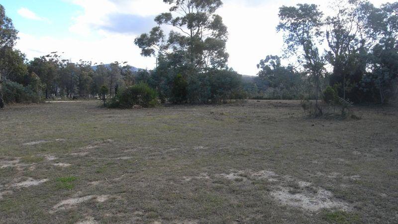property image 47979