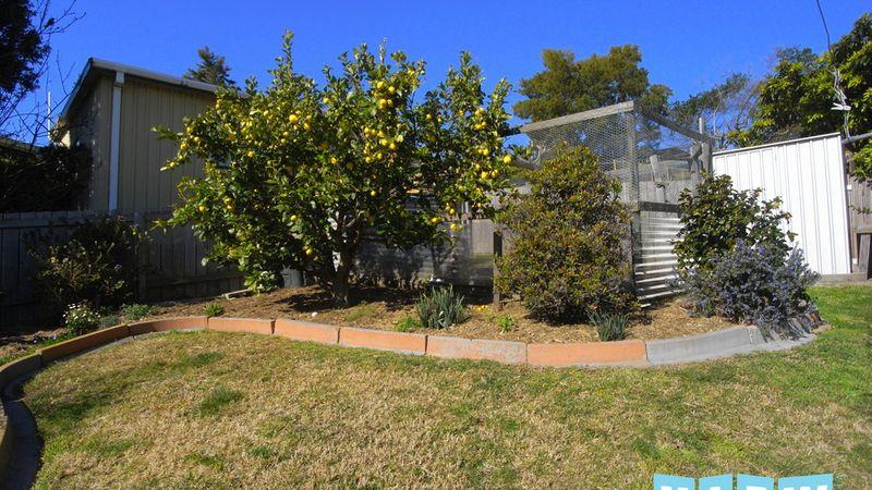 property image 264301