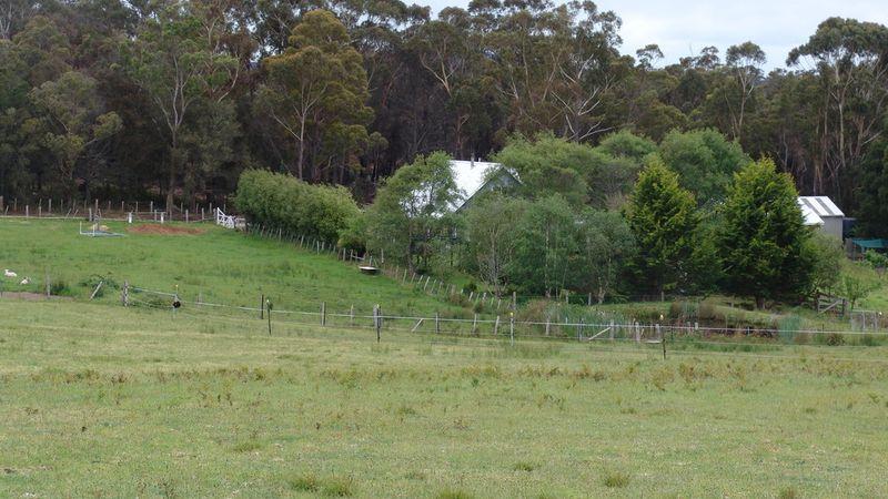 property image 53160