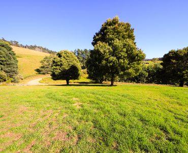 property image 53452