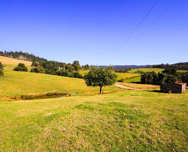 property image 53445
