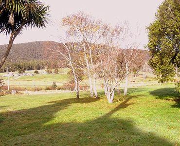 property image 53498