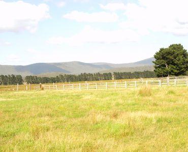 property image 53806