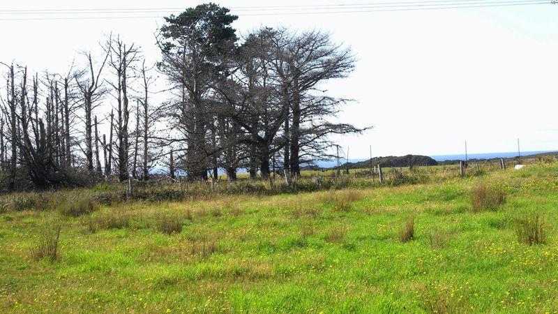 property image 53807