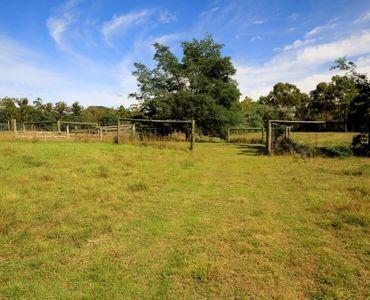 property image 53918