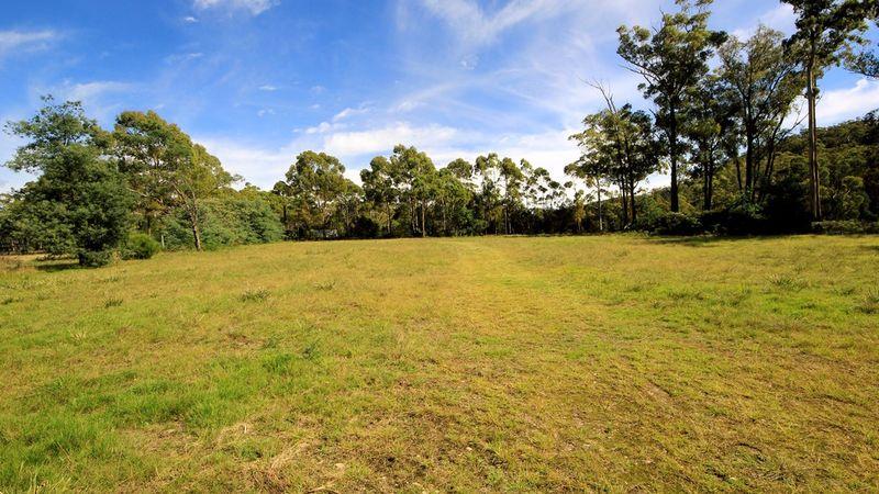 property image 53917
